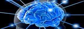 brain-tips